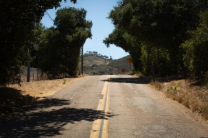 """Lali Mitchell lives along Country Club Road, a winding, dead-end street in Harmony Grove, California. In the 2014 Cocos Fire, traffic snarled as residents fled their homes. Mitchell said the road would not support increased traffic from new residents. """"There's no way you could be safe here,"""" she warned. (Kailey Broussard/News21)"""